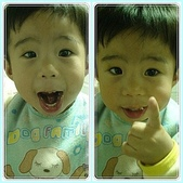 1歲10個月:1歲10個月