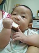 維維5個月:維維5個月      弟弟的米餅~稻鴉米餅2012/8