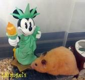 莉莉安卓公主的動物園17:1981447483.jpg