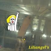 莉莉安卓公主的動物園17:1981447477.jpg