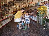 990808鶯歌陶瓷博物館:DSC04475.JPG