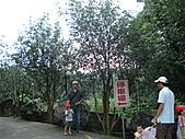 990912華山之旅:DSC04761.JPG