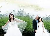 結婚照:33 (6).jpg