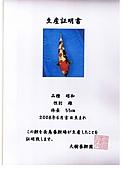 御三家錦鯉(來自福爾摩莎及台灣錦鯉網的超級錦鯉相片):cert-10.jpg