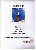 御三家錦鯉(來自福爾摩莎及台灣錦鯉網的超級錦鯉相片):cert-13.jpg