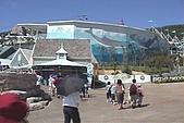 9208-11花蓮海洋公園:v館1[(000802)12-03-29].JPG