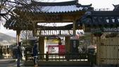 990122韓國之旅~DAY3-4南怡島:IMG_1767.JPG