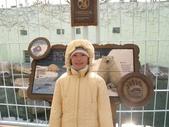 990121韓國之旅~DAY2-2愛寶樂園:IMG_1437.JPG