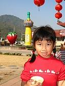 980209大湖草莓文化館&採草莓:IMG_7539.JPG