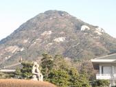 990123韓國之旅~DAY4-1青瓦臺:IMG_1860.JPG