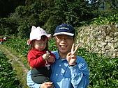 9201-1陽明山竹仔湖:DSCF0080.JPG
