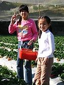 980209大湖草莓文化館&採草莓:IMG_7541.JPG