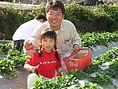980209大湖草莓文化館&採草莓:IMG_7542.JPG