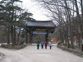 990122韓國之旅~DAY3-2雪嶽山國家公園神興寺:IMG_1688.JPG