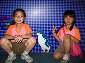980321艾貝兒親子同遊~木柵動物園看大貓熊:IMG_7768.JPG