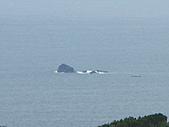 990525-1高雄墾丁畢旅~~社頂公園:IMG_2641.JPG