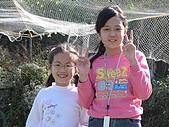 980209大湖草莓文化館&採草莓:IMG_7553.JPG