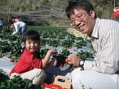 980209大湖草莓文化館&採草莓:IMG_7556.JPG