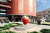 980209大湖草莓文化館&採草莓:IMG_7539-1.JPG