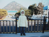 990123韓國之旅~DAY4-1青瓦臺:IMG_2386.JPG