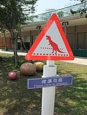 990407文心公園恐龍展:DSCF0766.JPG