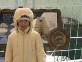 990121韓國之旅~DAY2-2愛寶樂園:PIC_0189.JPG