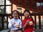 980209大湖草莓文化館&採草莓:IMG_7533.JPG
