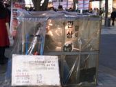 990123韓國之旅~DAY4-6石鍋拌飯:PIC_0642.JPG