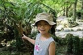 980826-2福山植物園:IMG_5478.JPG