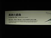 990525-2高雄墾丁畢旅~~海生館:IMG_2686.JPG