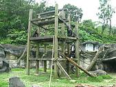 980321艾貝兒親子同遊~木柵動物園看大貓熊:IMG_7783.JPG