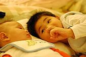 2010小鐵牛相簿:DSC_0015.JPG