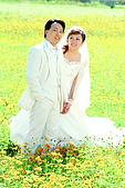 婚紗照:009057-046.jpg