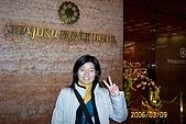 95.03.09~03.13 東京自助之旅:3/9 新宿王子飯店-小妹(小咪)